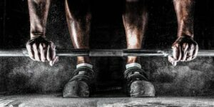 gainesforall.com-barbell-exercises